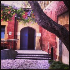 melb uni maths bld tree